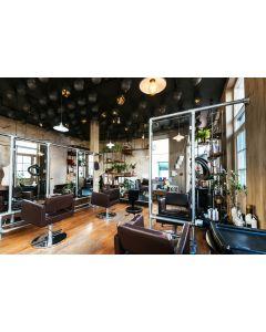 Hair Salon Style